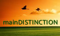 Main Distinction